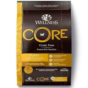 Wellness CORE Natural Grain Free Puppy Health Recipe Dry Dog
