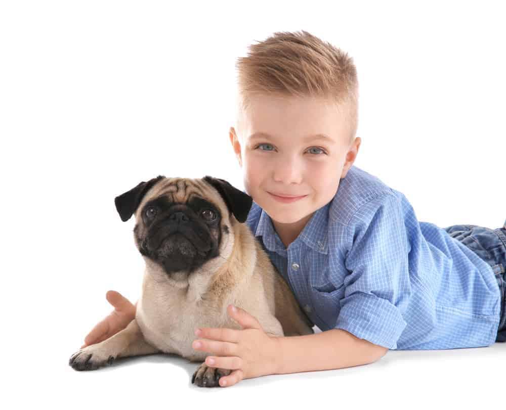 Cute boy with pug dog