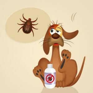 Dog with ticks