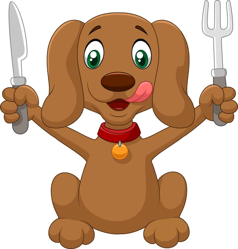 Hungry dog cartoon is ready to eat
